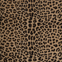 Claremont - Leopard